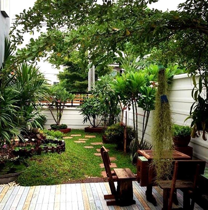 จัดสวนหน้าบ้าน ควรมีระดับความสูงไม่มากนัก สัก 5-7 เมตรก็นับว่าสูงแล้ว