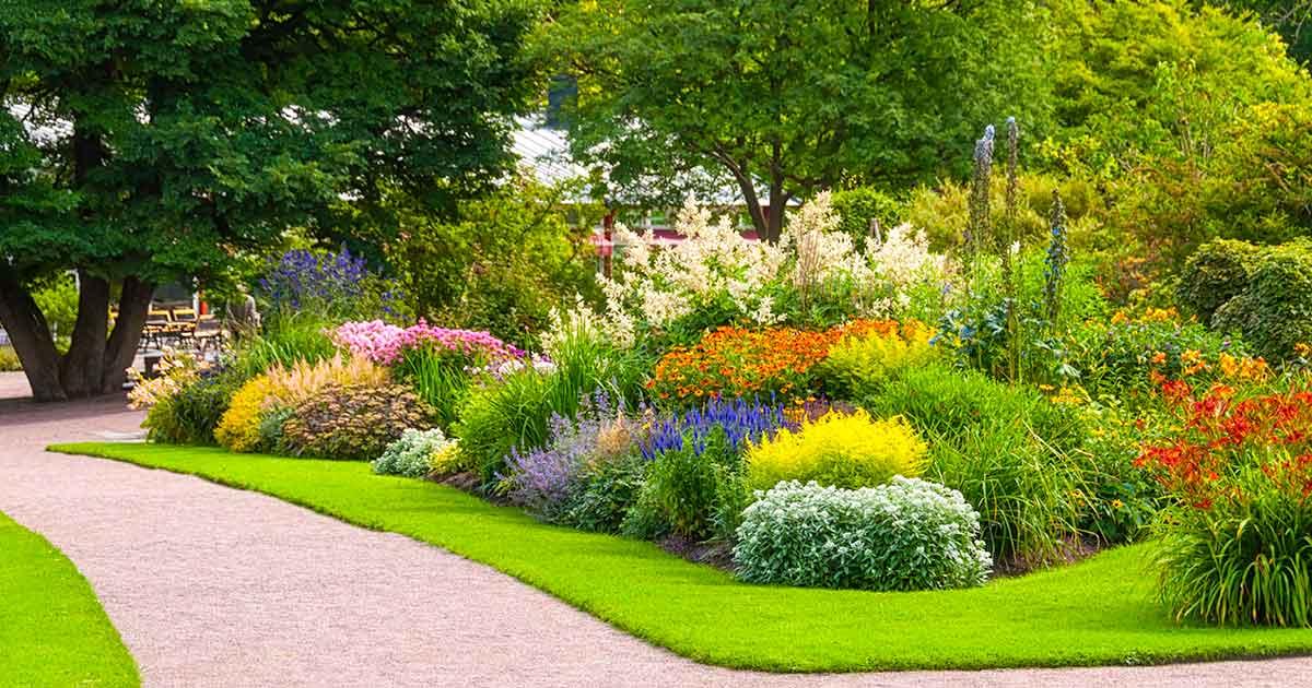 เรื่องที่ควรเตรียมให้พร้อม หากต้องการ ตกแต่งสวนหน้าบ้านด้วยต้นไม้ ให้สวยงาม