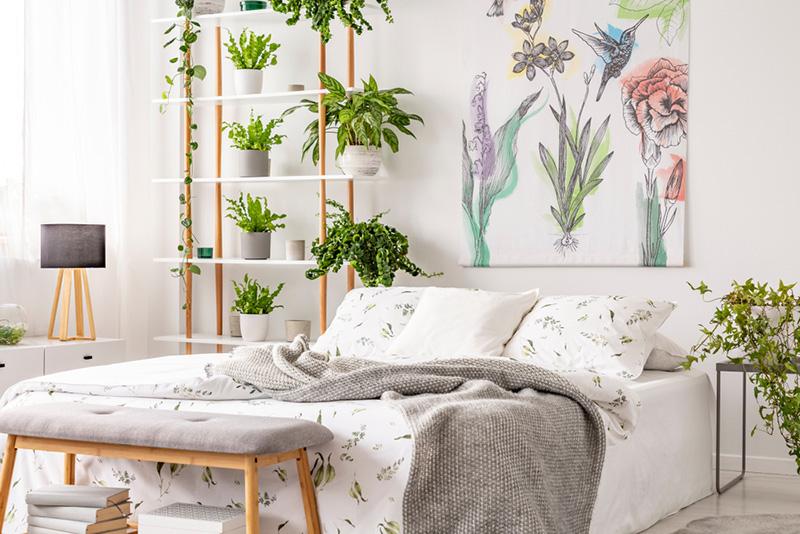 พื้นที่สีเขียวภายในบ้าน ภายในห้องนอน สวยๆ น่านอน