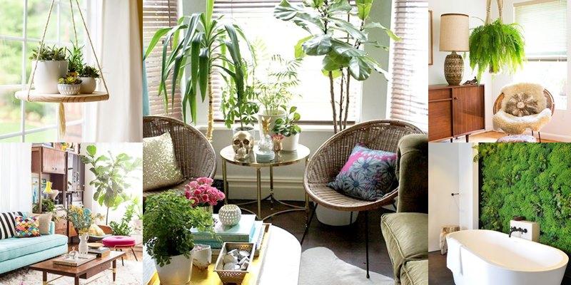 พื้นที่สีเขียวภายในบ้าน บริเวณ ห้องนั่งเล่น ทำให้น่านั่งยิ่งขึ้น